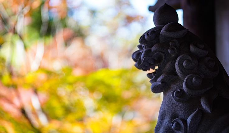 「第5回 寺社を彩る紅葉!フォトコンテスト」大賞作品「秋がやってきた」しょーへい さん作