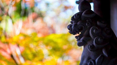 「第5回 寺社を彩る紅葉!フォトコンテスト」結果発表