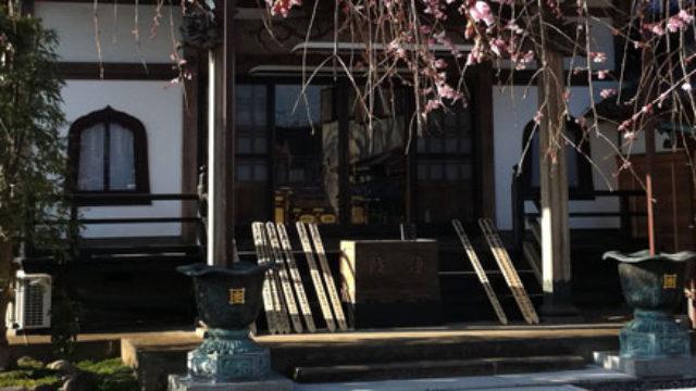 伝法寺 – 見事な枝垂れ桜がある寺