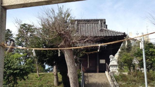 神明神社(小根本)- 松戸市役所の目の前にある神社