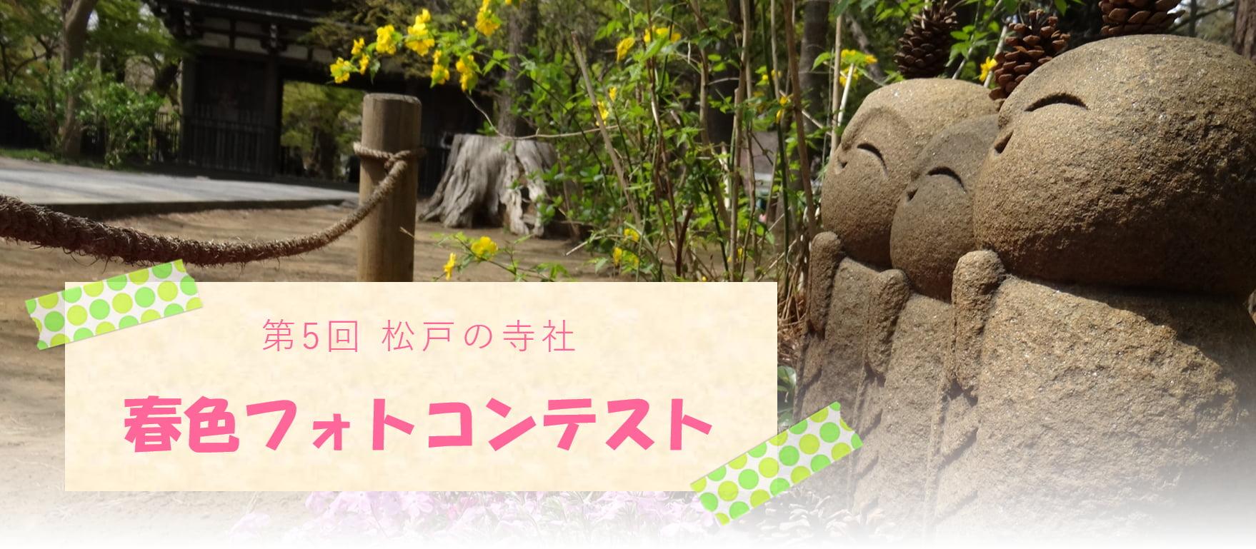 【受付終了】「第5回 松戸の寺社春色フォトコンテスト」開催のお知らせ