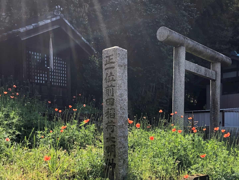 「第5回 松戸の寺社春色フォトコンテスト」結果発表